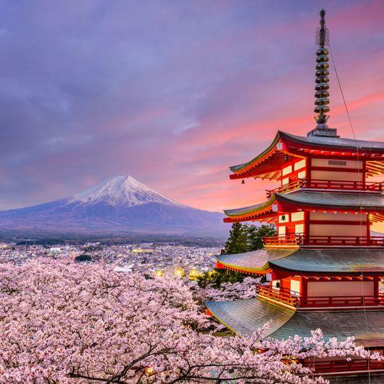 일본인 메리와 함께하는 일본어 토킹 모임!